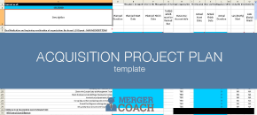 Mergers and Acquisitions Project Plan Templates
