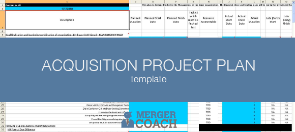 Acquisition Project Plan Template Excel Microsoft Project Formats Mergercoach M A Project Planning